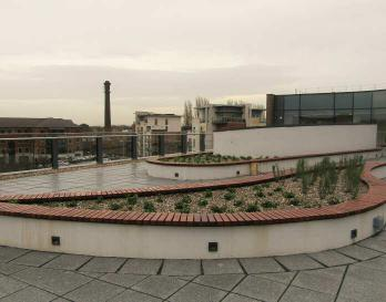 Green-tree Roof Garden Substrate reaches new heights in York