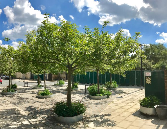 First UK installation of the ArborRaft Urban tree planting system revisited