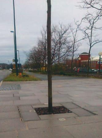 gtFortress tree grilles supplied to the Telford Town Centre Box Road Regeneration Project