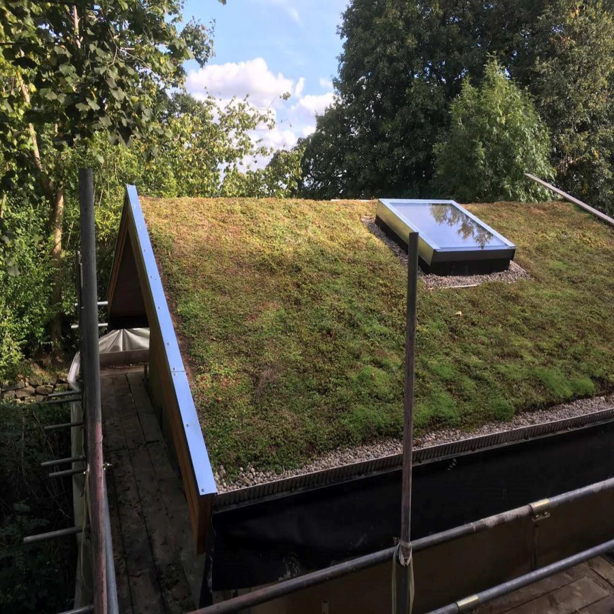 Green Roofs & Living Walls