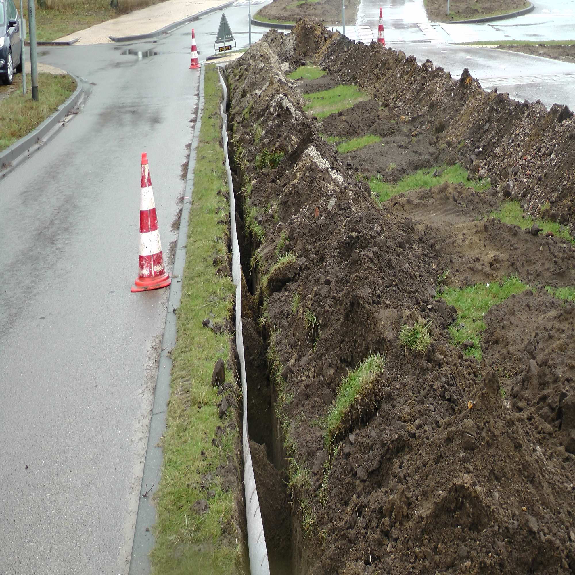 Tree Pit Root Barriers